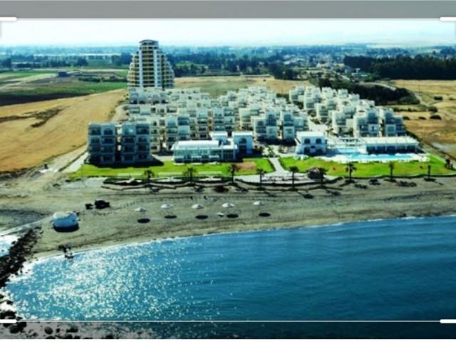 Güzelyurt Gaziveren, denize yakın Türk Koçanlı 1 dönüm arsa.Hoteller bolgesi...